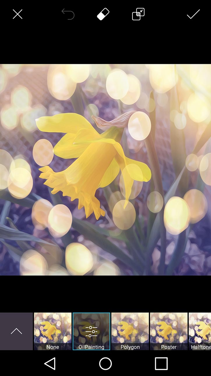 3d-photo-daffodil-card-picsart-oil-painting-option.jpg