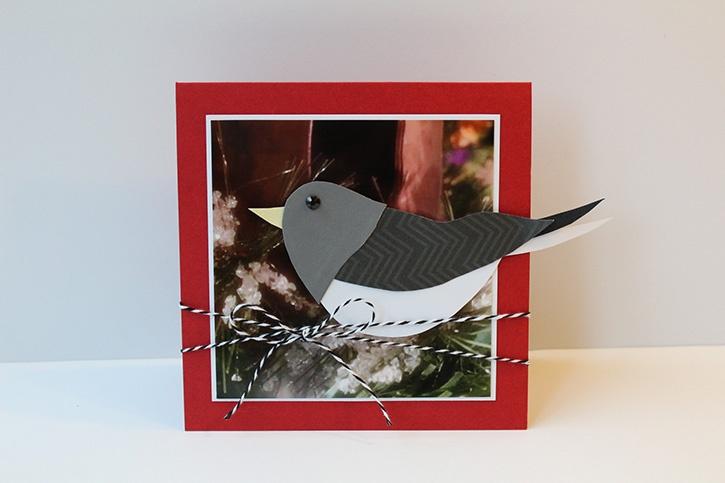 glue-dots-junco-christmas-card-by-danielle-hunter.jpg
