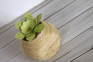 Upcycled Succulent Container-005